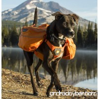 RUFFWEAR 2017 APPROACH DOG PET BACKPACK ♦ ADJUSTABLE EVERYDAY HIKING CAMPING PACK AND COLORS (Extra Small Orange Poppy) - B06XWKWQQB