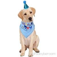 Ggkidsfunpet Dog Birthday Bandana Triangle Bibs Scarf Accessories with Hat for Pets Boys - B07FJ772GT