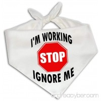 Stop I'm Working Ignore Me - Dog Bandana One Size Fits Most Service Animal - B01IGWVYS0
