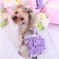 Jocestyle Pet Wear Dog Strap Sanitary Physiological Pants New Cotton Dots Print Pet Underwear - B077QJR11Y