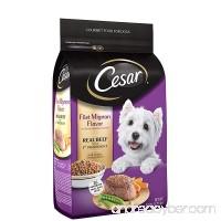 Cesar Small Breed Dry Dog Food - B01MSVKCMB