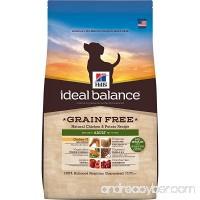 Hill's Ideal Balance Grain Free Dog Food - B00BIYLHX6