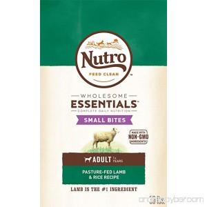 Nutro WHOLESOME ESSENTIALS Adult Dry Dog Food - Lamb & Rice - B00TQRLC6E