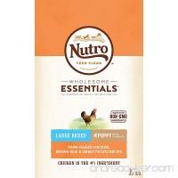 Nutro WHOLESOME ESSENTIALS Puppy Dry Dog Food - B00TQRK9QI