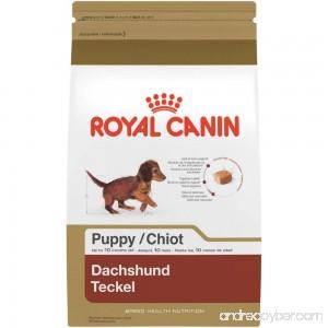 Royal Canin Breed Health Nutrition Dachshund Puppy Dry Dog Food - B00JN9LQJ8