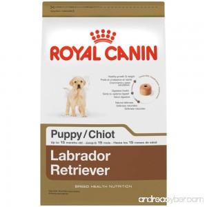 Royal Canin Breed Health Nutrition Labrador Retriever Puppy Dry Dog Food - B003M5ZKD2