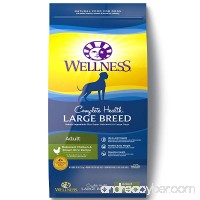 Wellness Complete Health Natural Dry Large Breed Dog Food Chicken & Rice - B001HYD6AY