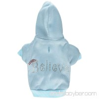 Mirage Pet Products 18-Inch Believe Hoodies XX-Large Baby Blue - B00HX35PIO