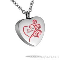 HooAMI Always in My Heart Urn Jewelry Cremation Ashes Necklace Silver Red - B01IVP1YOQ