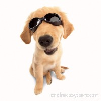 DOGGLES ★ BLACK ILS SUNGLASSES ★ UV PROTECTIVE EYEWEAR ★ ALL SIZES (Large) - B00LVQMGL8