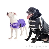 Derby Originals 600D Waterproof Dog Coat Insulated with 1 Year Limited Warranty - B00NFSA19O