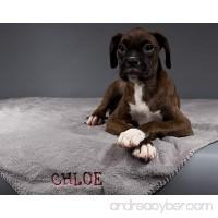 Dog Blanket - B00E5QB33S