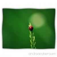 Kess InHouse Robin Dickinson Ladybug Hugs Green Pet Dog Blanket 60 by 50-Inch - B00JRYHD46