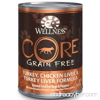 Wellness CORE Natural Grain Free Wet Canned Dog Food - B001QE7LFG