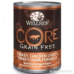 Wellness CORE Natural Grain Free Wet Canned Dog Food - B001QE7LFG