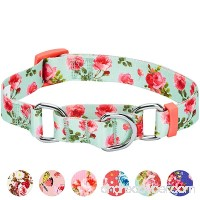 Blueberry Pet Spring Scent Floral Safety Training Martingale Dog Collar  No Buckle  with Personalization Options - B075868CY5