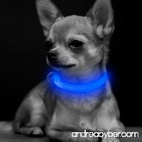 BSeen LED Dog Collar USB Rechargeable Glowing XS Adjustable Pet Collar  Light Up Reflective Dog Safety Collar for Small Dogs& Cats - B078W7VRSV