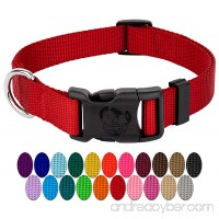 Country Brook Petz   Vibrant 21 Color Selection   Deluxe Nylon Dog Collar - B0091WNES8