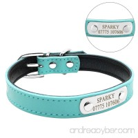 Didog Cute Leather Padded Custom Dog Collar with Engraved Nameplate ID Tag Fit Cats and Small Medium Dogs - B01N9IGO9D