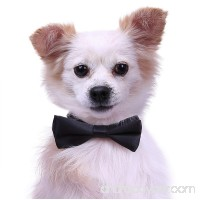 Dog Bow Tie Collar for Small and Medium Dogs Cats Pets Adjustable Bowtie - B077MTLYRV