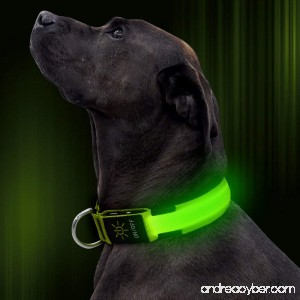 Illumifun LED Dog Collar USB Rechargeable Nylon Webbing Adjustable Glowing Pet Safety Collar Reflective Light Up Collars for Small Medium Large Dogs - B072Z9L5XS