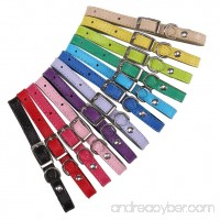 """KOOLTAIL 12 Pcs Leather Puppy ID collars whelping Identification Collar for Dogs Cats 6"""" - 10"""" - B07D6HFLHR"""