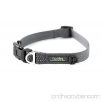 Mighty Paw Reflective Dog Collar  Premium High Visibility Collar - B079KJ4PXB