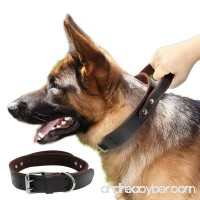 PET ARTIST Genuine Leather Dog Collar for Walking & Training Heavy Duty Dog Collar With Handle for Medium & Large Dogs - B075SWPQ22
