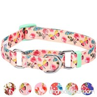 Blueberry Pet Spring Scent Floral Safety Training Martingale Dog Collar  No Buckle  with Personalization Options - B07587H83S