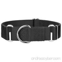 Country Brook Design 1 1/2 Inch Martingale Heavyduty Nylon Dog Collar - B009WAE16I