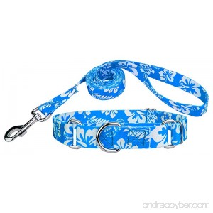 Country Brook Design Martingale Collar & Leash - Hawaiian Collection - B01MCY0YD1