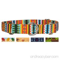 Country Brook Design Martingale Dog Collar - Summer Breeze Collection - B01HOW1VR2
