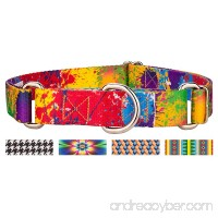 Country Brook Petz Martingale Dog Collar - Abstract Collection - B06XS27R8Y