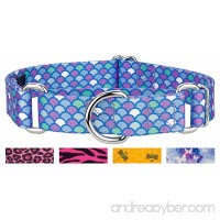 Country Brook Petz Martingale Dog Collar - Animal Collection - B07C4ZW9P8