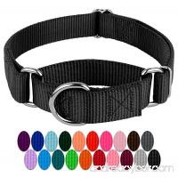 Country Brook Petz | Martingale Heavyduty Nylon Dog Collar - B009I1RACI