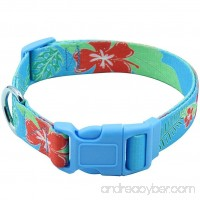 EXPAWLORER Hawaiian Dog Collar - Adjustable Heavy Duty Nylon Dog Collar with Tropical Floral Pattern Design Perfect for Medium to Large Dog in Summer - B079RZZLD5