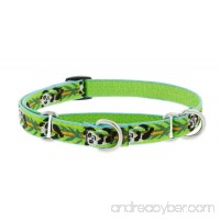 "LupinePet Originals 3/4"" Panda Land Martingale Collar for Small to Medium Dogs - B072HJCLKT"