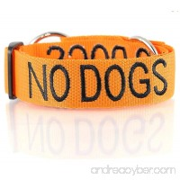 NO DOGS Orange Color Coded Semi-Choke Dog Collar (Not Good with Other Dogs) Prevents Accidents by Warning Others of Your Dog in Advance - B00BY8GN6C