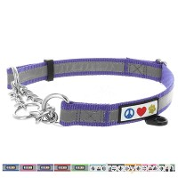 Pawtitas Pet Obedience Training Collar Reflective Martingale Chain Dog Collar Premium Quality Obedience collar dog chain No Pull Dog Collar for Training Half-Check Dog Collar - B078Q34WSG