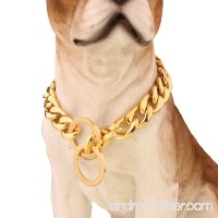 Strong 13/15/19mm Gold Plated Stainless Steel NK Chain Dog Collar Choker Necklace 12-36inch - B076Q1C3WG