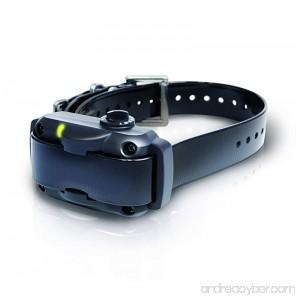 Dogtra YS600 Rapid Charging No Bark Collar - 10 level Stimulations Medium To Large - B01GOVRAC4