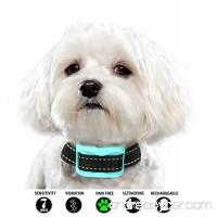 Small Dog Bark Collar | Barking Collars for Small Dogs | Bark Collar Small Dog | Citronella bark collar | Bark Collar | Anti Bark Collar | Anti Bark | Dog Bark Collar | No Bark | Pain Free | 3lb Plus - B07BJGP1TL