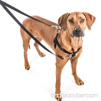 2 Hounds Design Freedom No-Pull Dog Harness: Velvet Padding  Multi-function & USA Made! Lots of Sizes & Colors (Leash Not Included) - B00A3XS95M