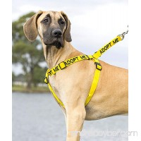 ADOPT ME Yellow Color Coded L-XL Non-pull Dog Harness (New Home Needed) Donate To Your Local Charity - B00BZTZJ3I