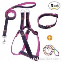 Bark Lover Designer Denim Collar/Leash/Harness Set - B078Y97RFV