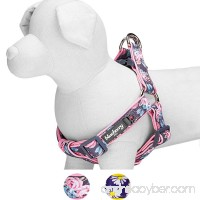 Blueberry Pet Soft & Comfortable Loving Floral Prints Adjustable Neoprene Padded Dog Harness 2 Patterns Matching Collar & Leash Available Separately - B01LY9NB97