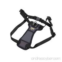 Coastal Pet Products Coastal Pet Walk Right! Front-Connect Padded Harness  Medium  Black - B00PVAM322