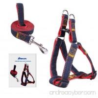 Dog Leash Harness  ARIKON Adjustable and Heavy Duty Durable Denim Dog Leash Collar for Training Walking Running  Best for Large Medium Small Dog - B00XP649U8
