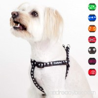 FluffyPal No Pull Harness For Dogs Take Control & Walk Happier! Comfort Dog Harness For Less Restriction & More Freedom! No Chocking Wiggling Or Slipping Out Secure Tight Fitting Adjustable Harness - B01NCSPUHI