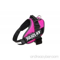 Julius-K9 16IDC-DPN-2 IDC Power Harness Size: 2 (71-96cm/28-37.5) Dark Pink - B01J5RSSHA